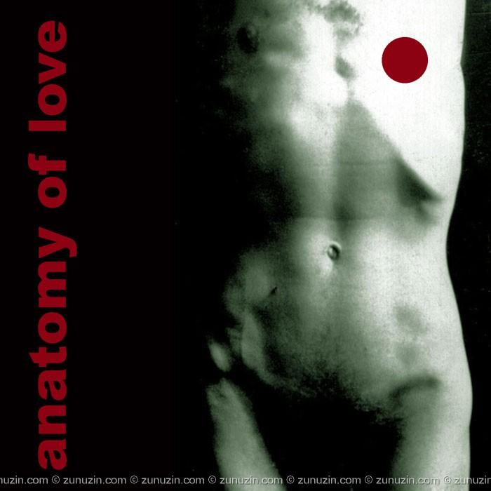 Motivational art poster - Anatomy of love