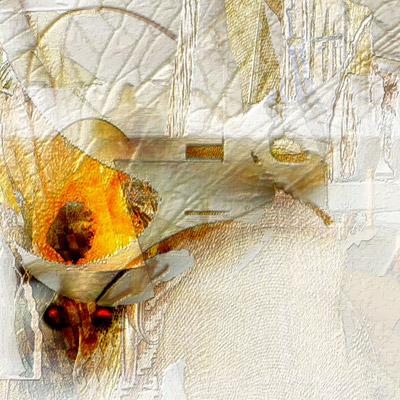 Fragment - Tenderness