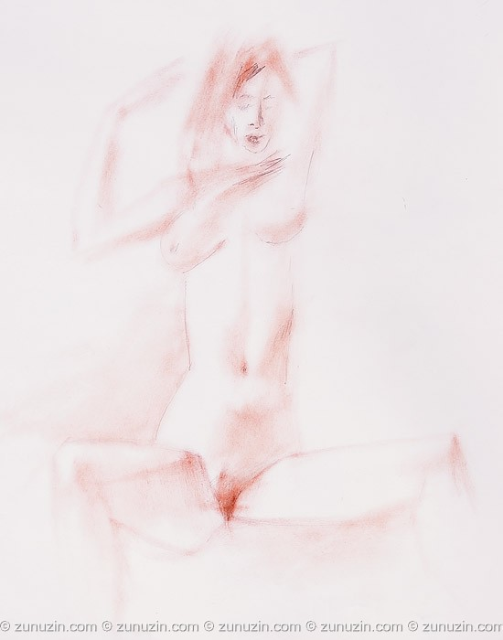 Naked drawing art - The naked girl