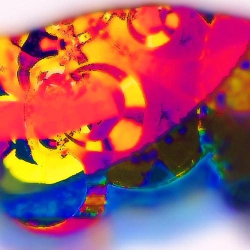 Fragment - Turtle