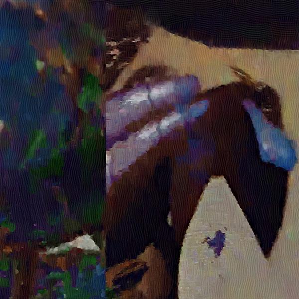 Fragment - Bird