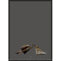 Buy poster online - Iron